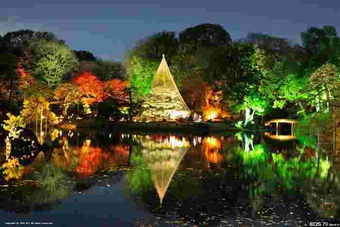「六義園」の紅葉は、夜にライトアップされることでも有名です。ほのかな灯りに照らされる木々がとても幻想的。時が経つのを忘れて見入ってしまう美しさです。「六義園」はJR・東京メトロの駒込駅から歩いて約7分ほどのところにあります。