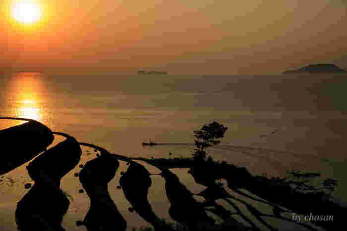 若狭湾に面した山の中腹から海岸線に広がる新井の棚田は、朝陽が昇る絶好の眺望スポットです。浮かび上がる朝陽、光を浴びて輝く水田、幾重にも折り重なる棚田が調和した景色は絶景そのものです。