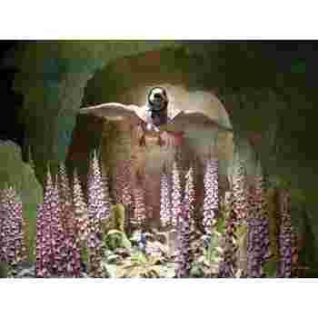 絵本の世界が、ビデオ上映や展示によって紹介されています。