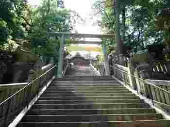アート以外にも、金比羅さんやお遍路さんなどのお寺巡りも有名。源平の合戦の舞台となった屋島や、栗林公園、こんぴら歌舞伎の「金丸座」など歴史的な観光名所もたくさんあります。