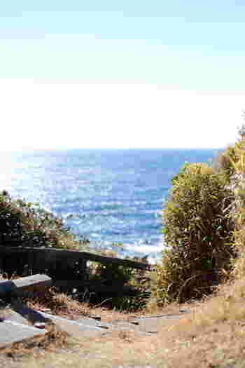 「荒崎公園」は、三浦半島屈指の景観を楽しめるスポット。公園の入り口に駐輪場があるので、自転車を降りて散策してみましょう。相模湾が一望できる「夕日の丘」は、その名の通りサンセットが美しいとカメラ女子にも人気。昼間のキラキラとした波間の美しさも格別ですよ。