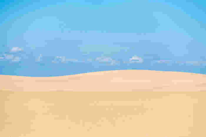 どこまでも続く美しい風紋の先には、コバルトブルーの日本海が悠々と波打っています。