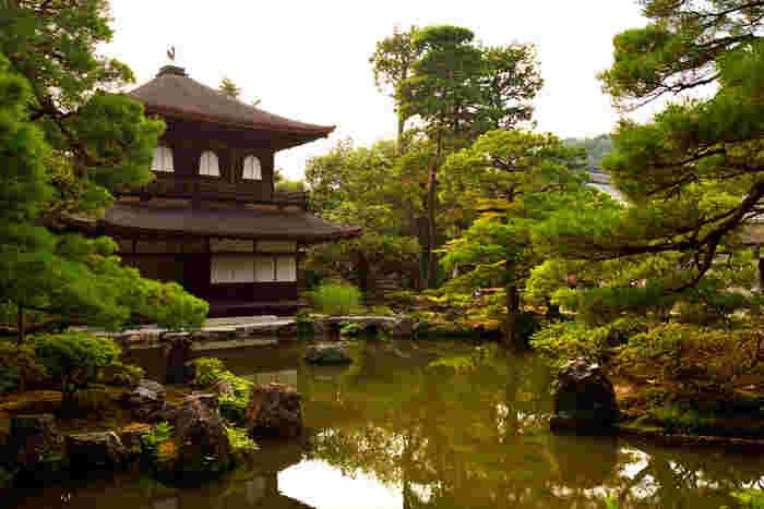 夏になると観音殿(銀閣)は深緑に包まれます。深い緑の葉をつけた樹々、静かな水面、詫び寂びの雰囲気を醸し出す観音殿(銀閣)が織りなす景色は、まるで一枚の掛け軸のようです。