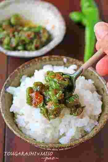 万願寺唐辛子を甘辛い味噌で絡めるように炒めた簡単レシピ。白いご飯や焼きなすの乗せて召し上がれ♪