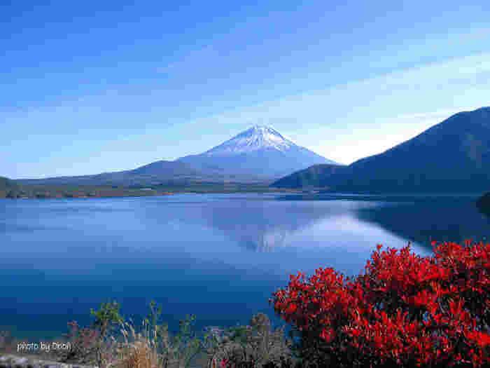 富士五湖の最西端に位置する湖、本栖湖(もとすこ)。千円札の裏に描かれた「富士山」のモチーフになった場所としても有名です。水深は約121メートルと富士五湖の中で最大。