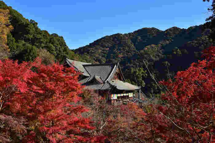 奈良と伊勢を結ぶ初瀬街道を見下ろす初瀬山の中腹に建立する長谷寺は、8世紀前半、奈良時代に開基された真言宗の寺院です。