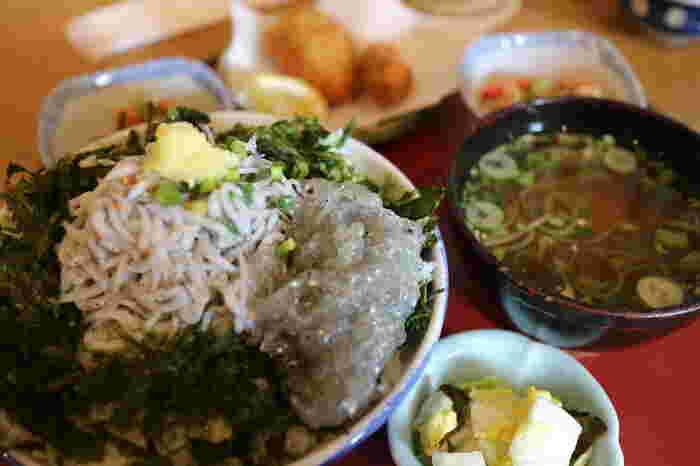 鎌倉らしい「しらす丼」が人気。ほんのりと甘みが感じられて美味しいですよ。 いつも釜揚げしらすを提供していますが、ときには、水揚げしたばかりの生しらすを仕入れている日も。運がよければ、生しらすトッピングも楽しめますよ。ふわふわ、つるつるのしらすを一緒に召し上がれ♪