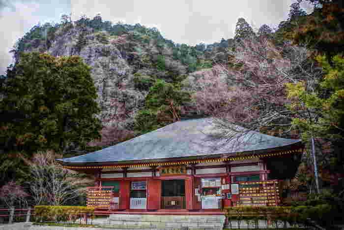 標高695m、1400万年前の火山の名残である流紋岩などでできている「鳳来寺山」は紅葉の名所として知られ、山全体が国の名勝・天然記念物に指定されている自然の宝庫です。山の中腹にある鳳来寺の参道には樹齢800年を数える現存するものとしては日本一の高さ60mを誇る傘杉があり、新日本名木百選に選ばれています。
