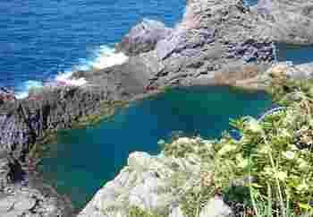 神津島港から車で15分程度の距離にある「千両池」です。この千両池は、実は入り江。海とつながっている場所なんですが、岩場に囲まれているため、まるで池のよう。千両池には入ることも可能で、シュノーケルにはもってこいの場所ですが、岩場を下って行かなければいけません。絶景を楽しむだけでいいという方は、高台からの景色を堪能しましょう。