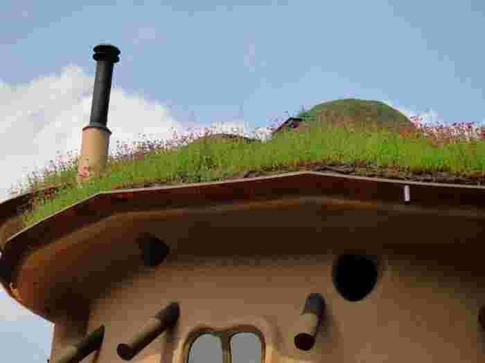 屋根には緑が育ち、一層メルヘンな雰囲気を醸し出しています。ひょっこり付き出た煙突もかわいらしいです。