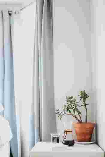 網戸や窓枠、カーテンなど、窓周辺にスプレーすることで、窓からの虫の侵入を防ぎます。風と共に爽やかな香りも運んでくれますよ。(※網戸がポリスチレン(PS)でないことや、布が変色しないかなど、初めは小範囲にとどめ確認をお願いします。)