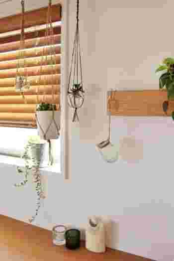 天井からつるしたり、窓辺に置いたり。 長押にひっかけて、上にもアレンジ。  たくさんの植物がそれぞれに生き生きと輝いています。