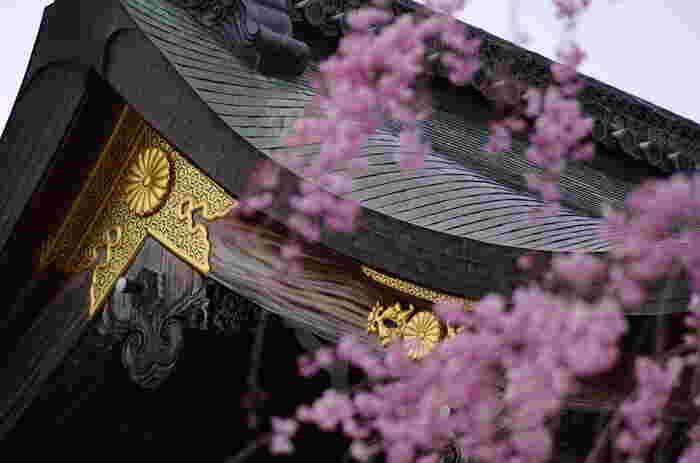 """【建具に施された""""菊の御紋""""入りの金具。皇族に関係する大覚寺ならではの見事な装飾です。】"""