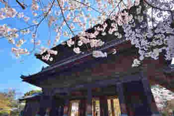 3つの通り道がある「南禅寺」の三門は、悟りに通じる3つの関門「空」「無相」「無作」を表しているのだとか。  歌舞伎「楼門五三桐(さんもんごさんのきり)」には、「石川五右衛門」が、この三門で咲き誇る桜に『絶景かな、絶景かな』と言ったという逸話が残されています。