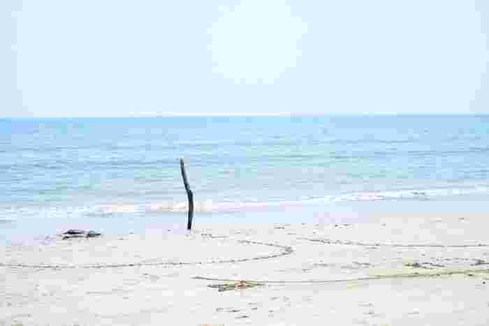 一般的に稲村ヶ崎から飯島岬までの海岸を総称して「由比が浜」と呼んでいますが、現在では、稲瀬川河口から滑川河口までの間を「由比ヶ浜」と呼び、長谷から海まで流れる「稲瀬川」河口から稲村ヶ崎までを「坂ノ下海岸」と呼んでいます。 長谷に足を運んだのなら、湘南の海を歩き、潮風と景色も楽しみましょう。
