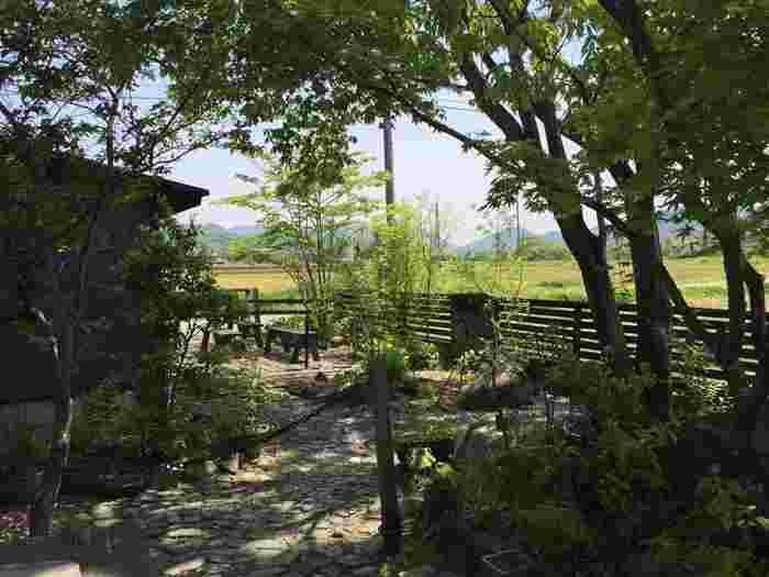 もちろん、このお庭も手作り! 雑木林に憧れて、観賞用の整った庭というより、木も花も自然に咲いているような落ち着ける庭にしたくて今の形になったそうです。  枕木で作られたテラスや耐火レンガの小道など、こだわりが随所に。シンボルのコナラの木を始め多くの樹木や草花で彩られたお庭は自然のエネルギーを感じるパワースポット♪