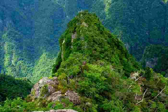 目が眩むような高さの崖下を覗き込むと、大蛇の頭ような形をした奇岩「大蛇嵓」が見えます。大蛇嵓を覗き込んでいると、まるで自分が大きな大蛇の背に乗ったかのような気分を味わうことができます。