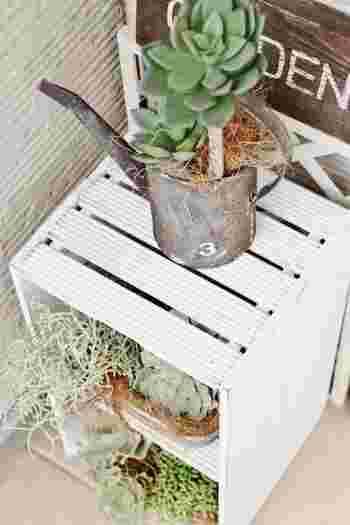 家庭菜園や、観葉植物の管理にはベランダは最適♪ラックや椅子などを使って、立体的に空間をうまく利用することがポイントです。