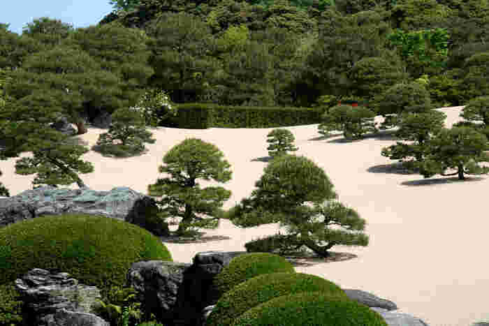 横山大観の名作『白沙青松』をモチーフにして、足立全康が心血を注いで造園しました。白砂の丘陵にリズミカルに大小の松を配した庭園は、大観の絵画そのものです。】