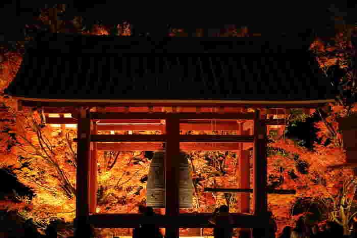 11月末頃にはかなり冷え込むこともある京都、アウターの下に着ることのできるライトダウンベストや、首もとをあたたかくするショールなどをお忘れなく。特にライトアップを見に行かれる方は、蓄熱の肌着を一枚プラスするのがおすすめ。朝晩気温が冷え込むと、紅葉の色が鮮やかになると言われているので、寒さをぐっと感じる年はより美しい景色に出会えるかもしれませんね。