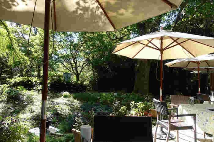 「日比谷松本楼グリル&ガーデンテラス」は、1903年に日比谷公園内に創業した歴史あるカフェレストランです。豊かな緑で癒しをもらえる日比谷公園の緑や風を感じながら、ゆっくりとくつろげる店内やテラス席でお食事やティータイムを過ごすことができますよ。大変気持ちの良い、開放的なお店です。