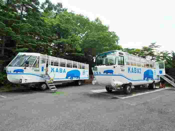 富士山と山中湖の大自然を満喫するなら、「YAMANAKAKO NO KABA」がオススメ。森林のドライブを10分、湖を20分航行できる国内ではまだ珍しい水陸両用バスです。