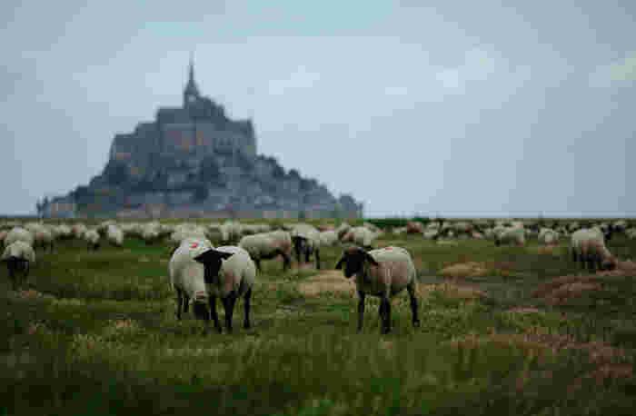 様々な方向から様々な景色で私たちを魅了するモン・サン=ミッシェル。2度目以降のフランスにいくなら、ぜひゆっくりと時間をとって訪れてみてください。