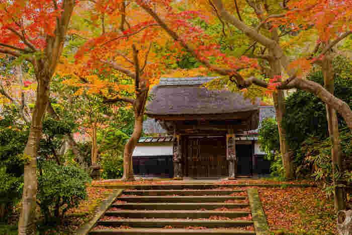 北鎌倉駅から徒歩1分とアクセスのよい場所にある「円覚寺」。経典の『円覚経 / えんがくきょう』が出土したことがその名の由来といわれています。そのため「えんかくじ」ではなく「えんがくじ」との呼び名が正しいですよ。