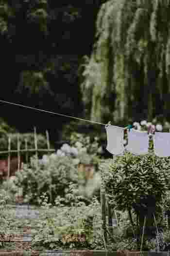 タオルを干す前に数回、空中で上下にパタパタと振って寝ていたパイルに空気を含ませ起こしてあげましょう。こうすることで乾いた時にあのふわふわ感がよみがえります。