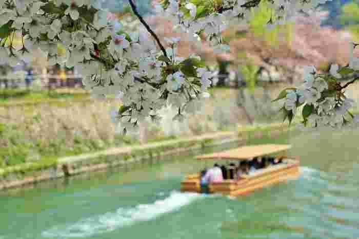 くつろげるステキなカフェがたくさんある京都文化ゾーン「岡崎」。のんびりお散歩してみませんか?