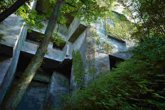 標高329.4メートルの山頂に着いたら、山道を散策しましょう。「房州石」の産地として江戸時代から採石が行われ、まっすぐに切られた石切場の跡地は圧巻です。