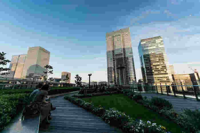 2013年3月に旧東京中央郵便局跡地に日本郵便の高層ビル「JPタワー」が完成しました。JPタワーに商業施設としてオープンしたのが「KITTE(キッテ)」。6階に屋上庭園「KITTEガーデン」があります。