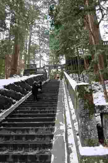 徳川家康が眠るとされる奥社まで、200段ほどの急で長い階段が続きます。雪の日は滑りやすいですが、風情があって良いですね。  苔むした石垣が雰囲気たっぷり。ゆっくり登りましょう。