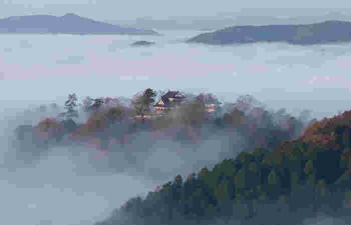 雲海が発生しやすいのは9月下旬~4月上旬の明け方から午前8時頃。特に寒い時期の早朝には濃い朝霧が期待できるそう。日中と夜間の気温差が大きく、晴れている日を狙ってみてください。