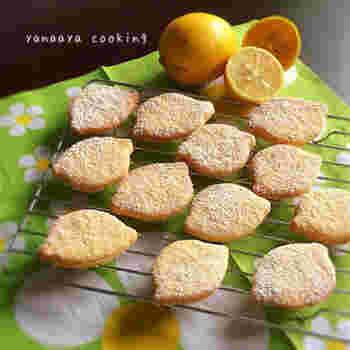 材料を混ぜ合わせ焼くだけのクッキーは、お料理初心者さんでも簡単に作れる、嬉しいレシピ。レモンの香りがほのかに香り、優しい味わいのクッキーは、お子さまと一緒にお好きなクッキー型で作ってみてはいかがでしょう。生地がベタついてまとまらない時は手に薄力粉をまぶしてまとめるとスムーズに!