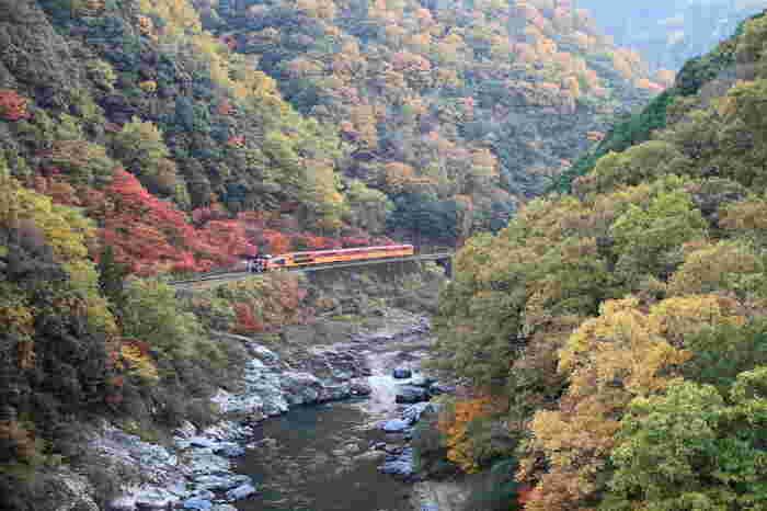 嵐山から亀岡までの保津峡を川に沿うように走る「嵯峨野トロッコ列車」。嵐山の「トロッコ嵯峨駅」と亀岡の「トロッコ亀岡駅」を約25分で結びます。平均速度は25kmほどな上、特に紅葉が美しいスポットでは停車もされるため、じっくり眺めたり写真を撮ったりすることも可能です。