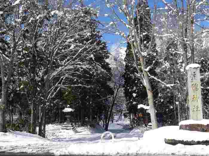 冬は降雪量が多いこともあるので事前に情報をチェックしてから計画をたてたほうが良いかも。特に奥社は1月〜4月の冬の間社殿と授与所の窓口が閉まってしまうため、御朱印集めで訪れる際も注意が必要です。