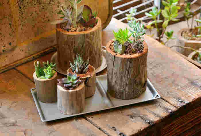 アルマイト加工したアルミは、耐久性が高いのでちょっとした水気や摩擦にも強いです。植物を置くトレイとして使っても素敵ですね。