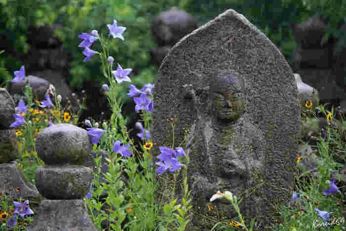 境内には石像や石塔などが並び、1,300年の歴史が間近に感じられます。飛鳥時代に伝わった仏教の瞑想「禅観」の体験ができる日があるので、興味のある方は問い合わせてみてくださいいね。