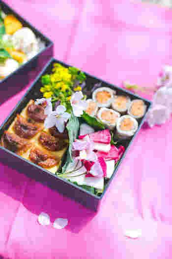 紅白のカブのピクルスが何ともおめでたい雰囲気。菜の花は、紫水菜と合わせてサラダ仕立てに。桜の木の下でちらちら降る桜の花びらを眺めながら食べたいお弁当です。