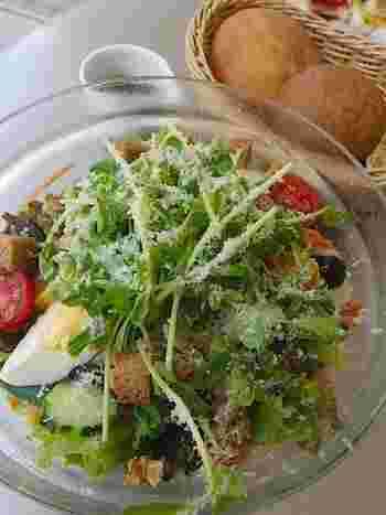 サラダランチセット  何種類もの野菜が入った、ボリュームたっぷりのサラダランチは女性に大人気。食べ応え抜群で、これだけの野菜を外で食べられるのはとっても嬉しい。焼きたてのフォカッチャと玄米パンもサラダとの相性抜群で、とってもおいしい。