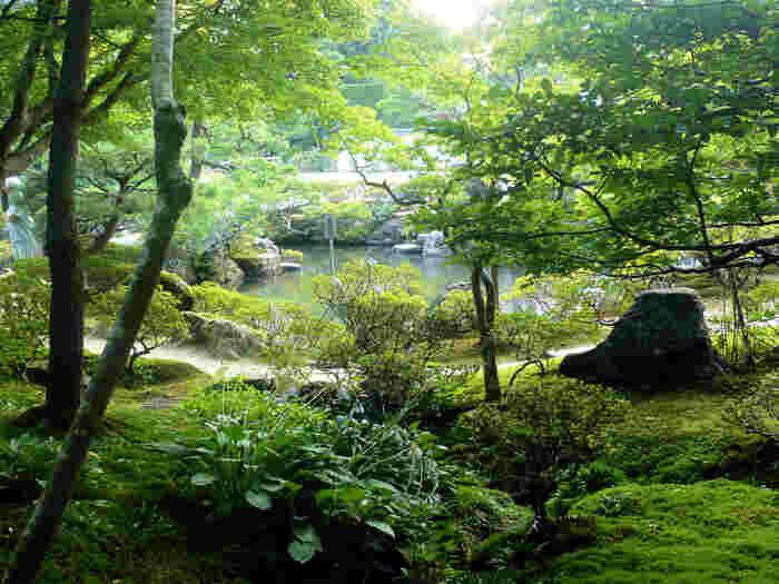 銀閣寺の見事な庭園にも苔がびっしり。 木々の魅力と相まって、荘厳な雰囲気を醸し出しています。