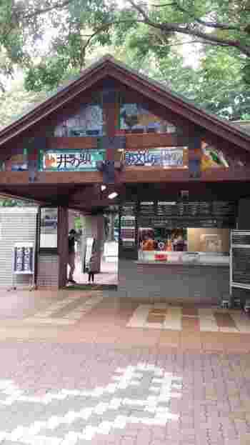 井の頭公園というと池とボートのイメージがありますが、実は「井の頭自然文化園」という小さな動物園もあるんです。  その歴史は古く、開園は1917年(大正6年)。「動物園(本園)」と、水生物館が位置する「水生物園(分園)」のふたつに分かれていて、大人も楽しめる展示がたくさん。