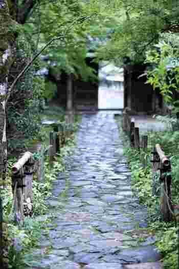 日本の伝統的な情緒が漂っている京都。でも、観光客が多いと少し雰囲気に欠けてしまって残念、なんてこともありますよね。