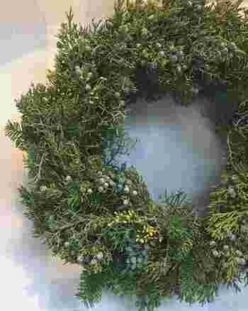 クリスマスツリーでおなじみのモミ。こちらも一気にクリスマスっぽさが出せる植物です。生のリースを作る時にはモミをたっぷりと使ってボリュームを出すのもおすすめ。