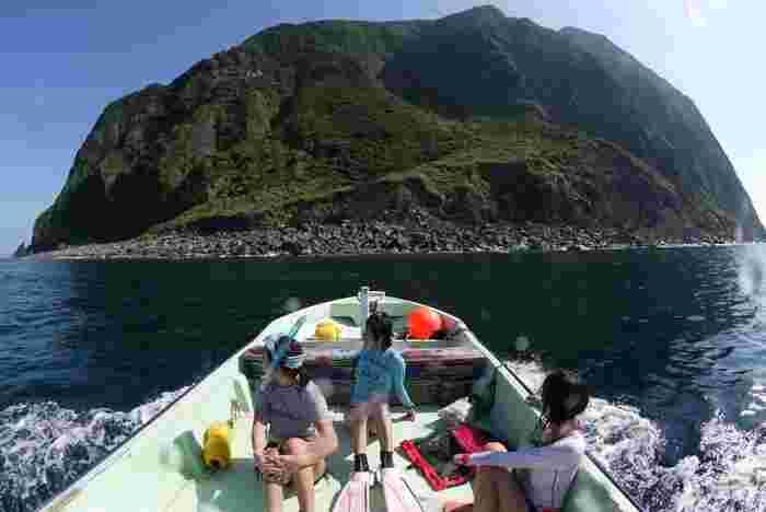 当日は、宿の所有船や宿と提携しているウォッチング船で、2時間程度の「イルカウォッチング」を楽しめます。