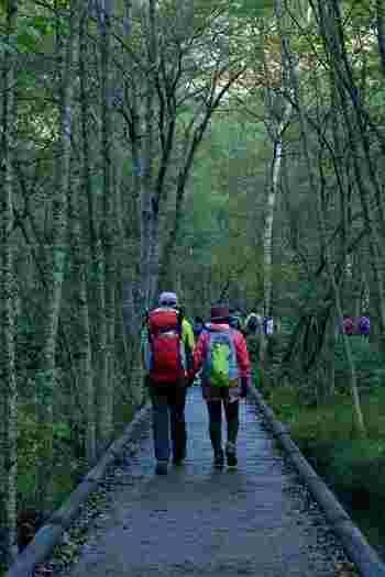 上高地は、登山客のために歩道などがしっかり整備されています。とはいえ、普段運動していない人が長時間歩けば、脚に負担がかかることも。登山靴や登山着などを身に付け、休憩をとりながら無理なく歩くようにしましょう。また、上高地は気温が低いためウィンドブレーカーなど温度調節をする着衣を必ず持参してくださいね。