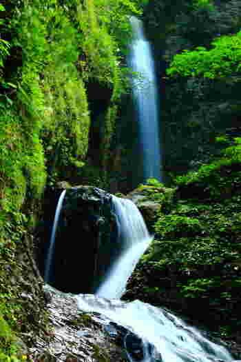 那須塩原の代表的な滝、「竜化の滝(リュウカノタキ)」。3段に流れる様子が竜が登っている様子に見えることから名づけられました。遊歩道が整備されているので、歩きやすいのがうれしいですね。水音に耳を澄ませるとリラックスできそうな気がしませんか?
