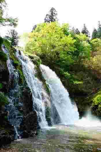 こちらも白銀公園内にある、高さ22mの二本の滝。間近で滝を見ることができますよ。  白銀公園はとにかく自然がたくさん!温泉街のすぐ近くなので、ぜひ散策してくださいね。