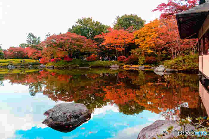 テイストは違いますが日本庭園も自然美を追求して作庭するので、日本人とイギリス人のガーデニングの好みはとても似ているんです。近年では自宅の庭をイングリッシュガーデン風にする人も増えているそう。庭に小さな自然があるって素敵ですよね。